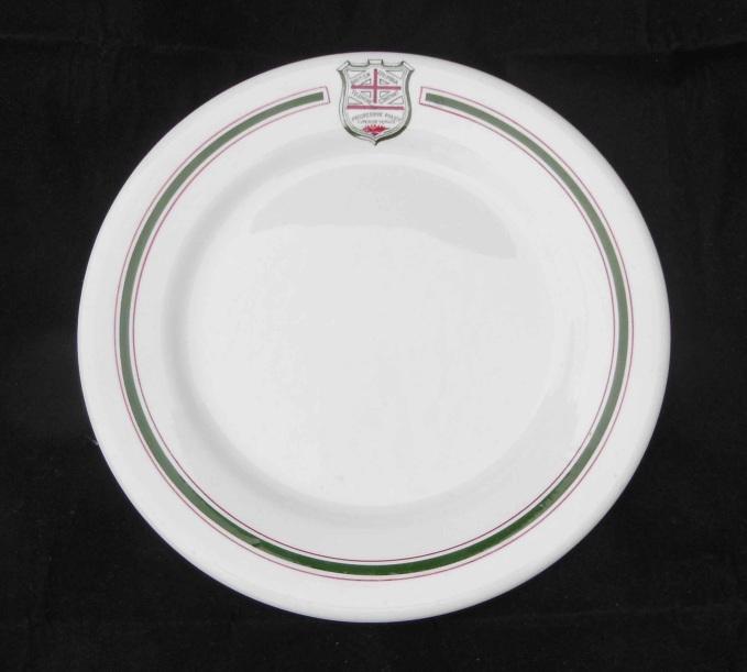 BC TEL medium plate